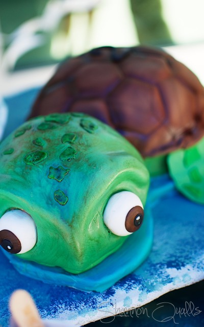 Turtle Cake by Kim Garcia on Parties and Potty Training