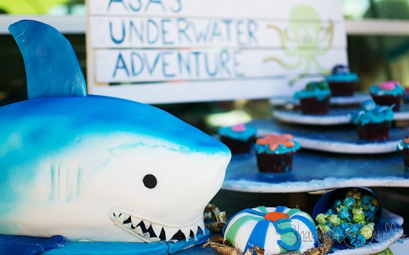 Shark Cake with candy filled beach ball