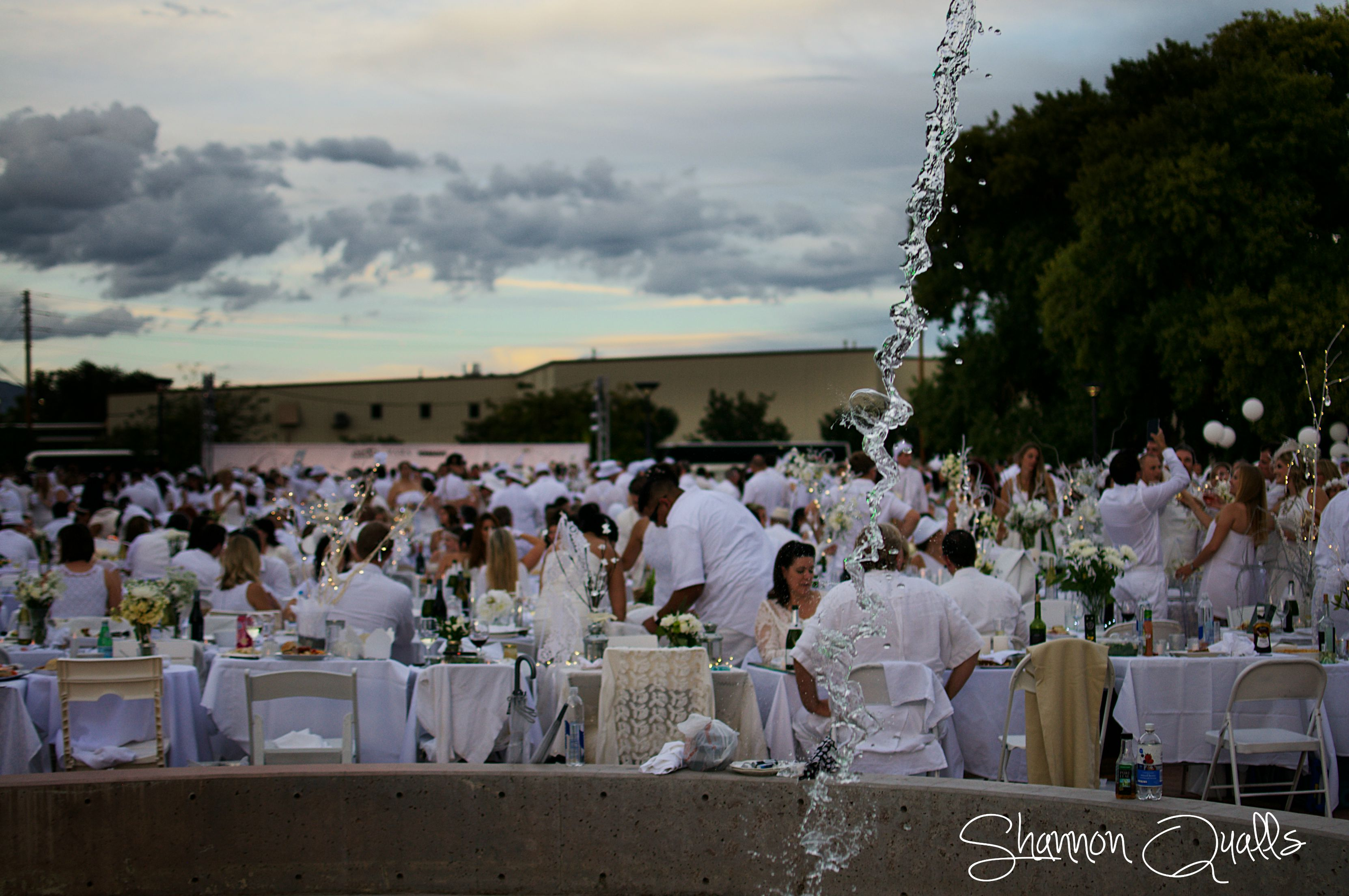 Diner en Blanc Fountain from shannonqualls.com