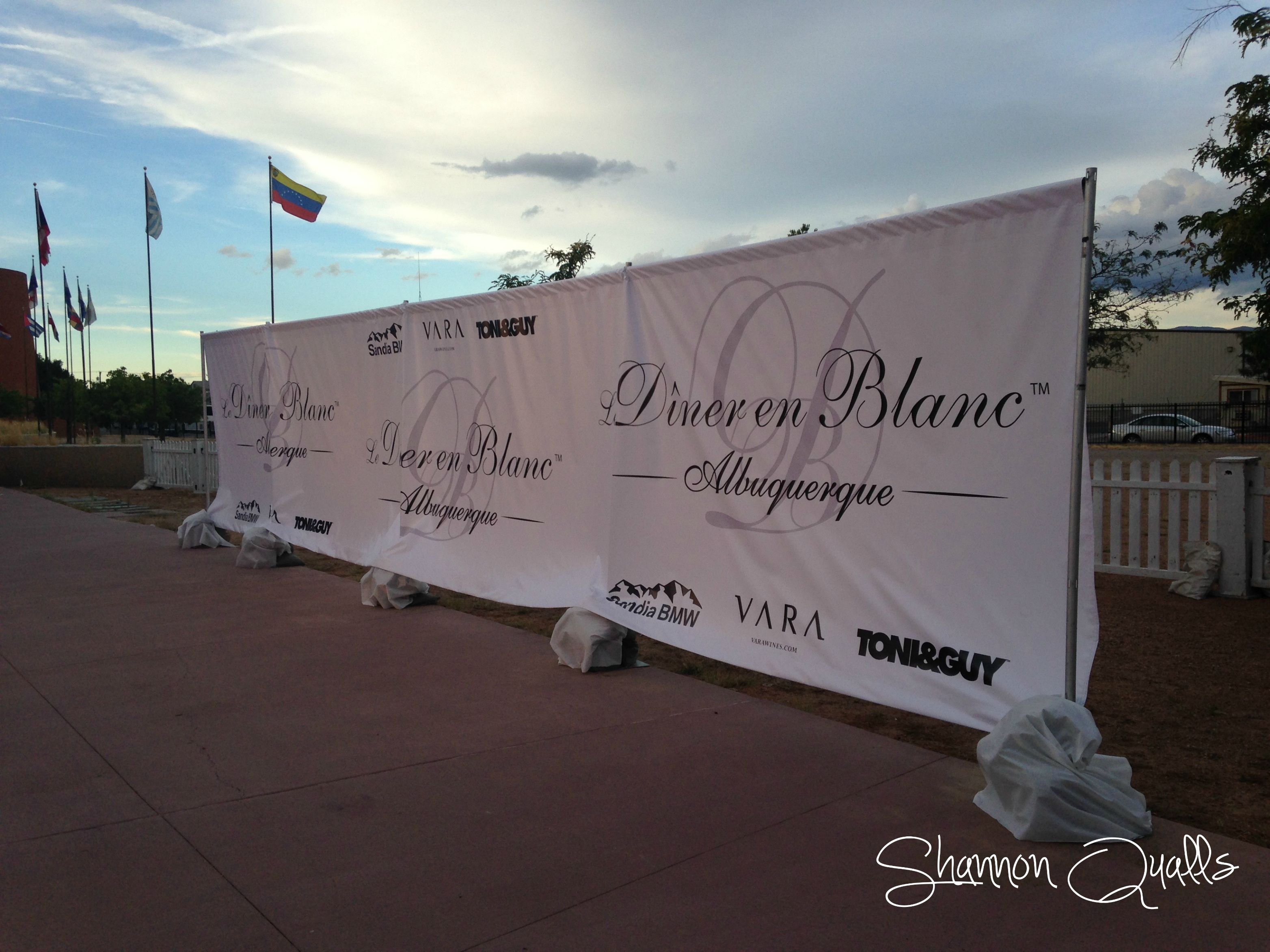 Dinner en Blanc Step and Repeat from shannonqualls.com